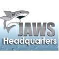 Программное обеспечение экранного доступа «Jaws for Windows»